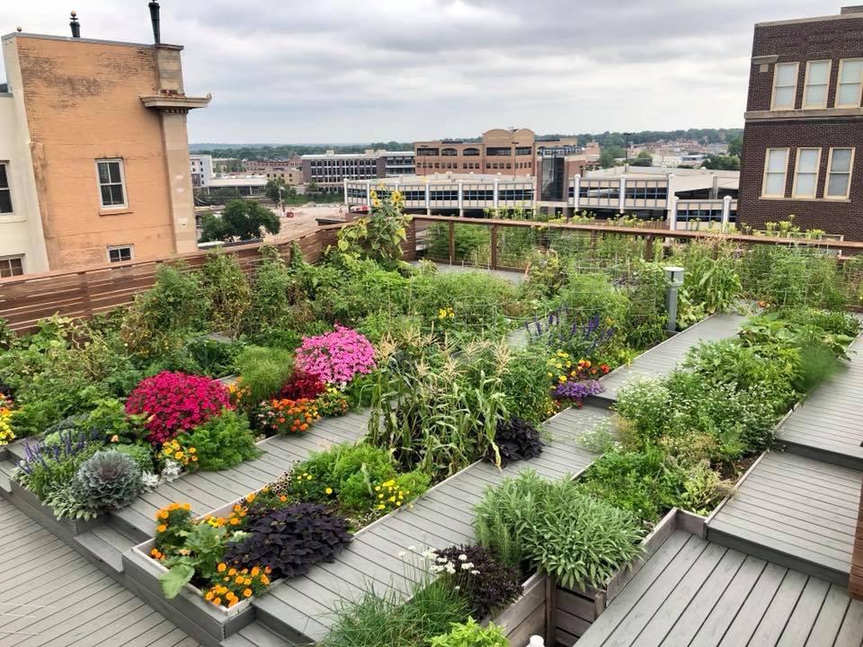 Downtown Building Offers Rooftop Garden Harvest Siouxfalls Business